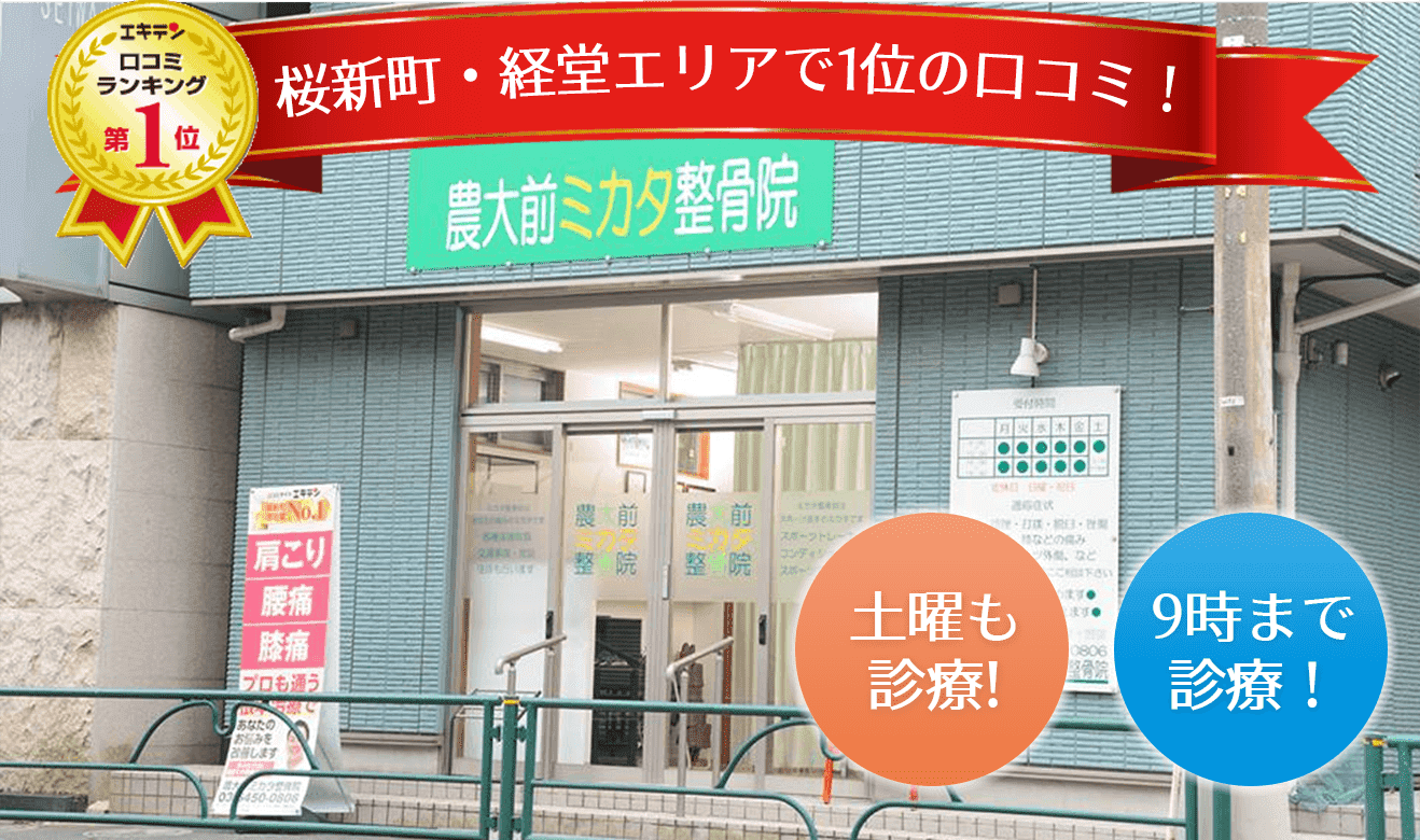 桜新町・経堂エリアで1位の口コミ!ミカタ整骨院